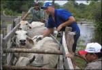 imagem-8-vacinacao-na-calha-do-rio-amazonas