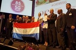 PARAGUAY RECIBE CERTIFICACIONES DE PAÍS LIBRE DE FA Y LIBRE DE PPC EN LA 85ª SESIÓN GENERAL DE LA OIE.